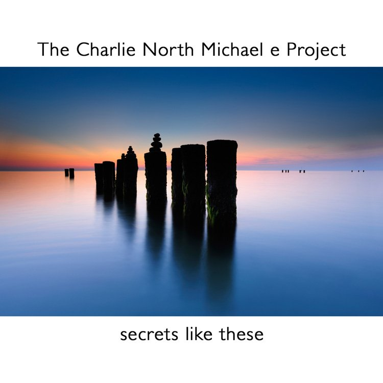 The Charlie North Michael e Project