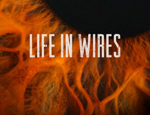 Evadez – Life In Wires is out now