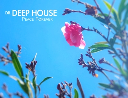 Debut album by Dr. Deep House is out now.
