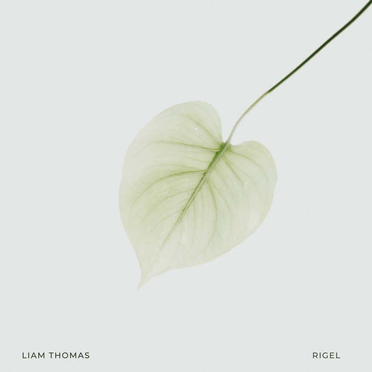 Next single by Liam Thomas is out now