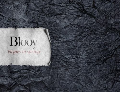 DEBUT EP BY BLOOY IS OUT NOW